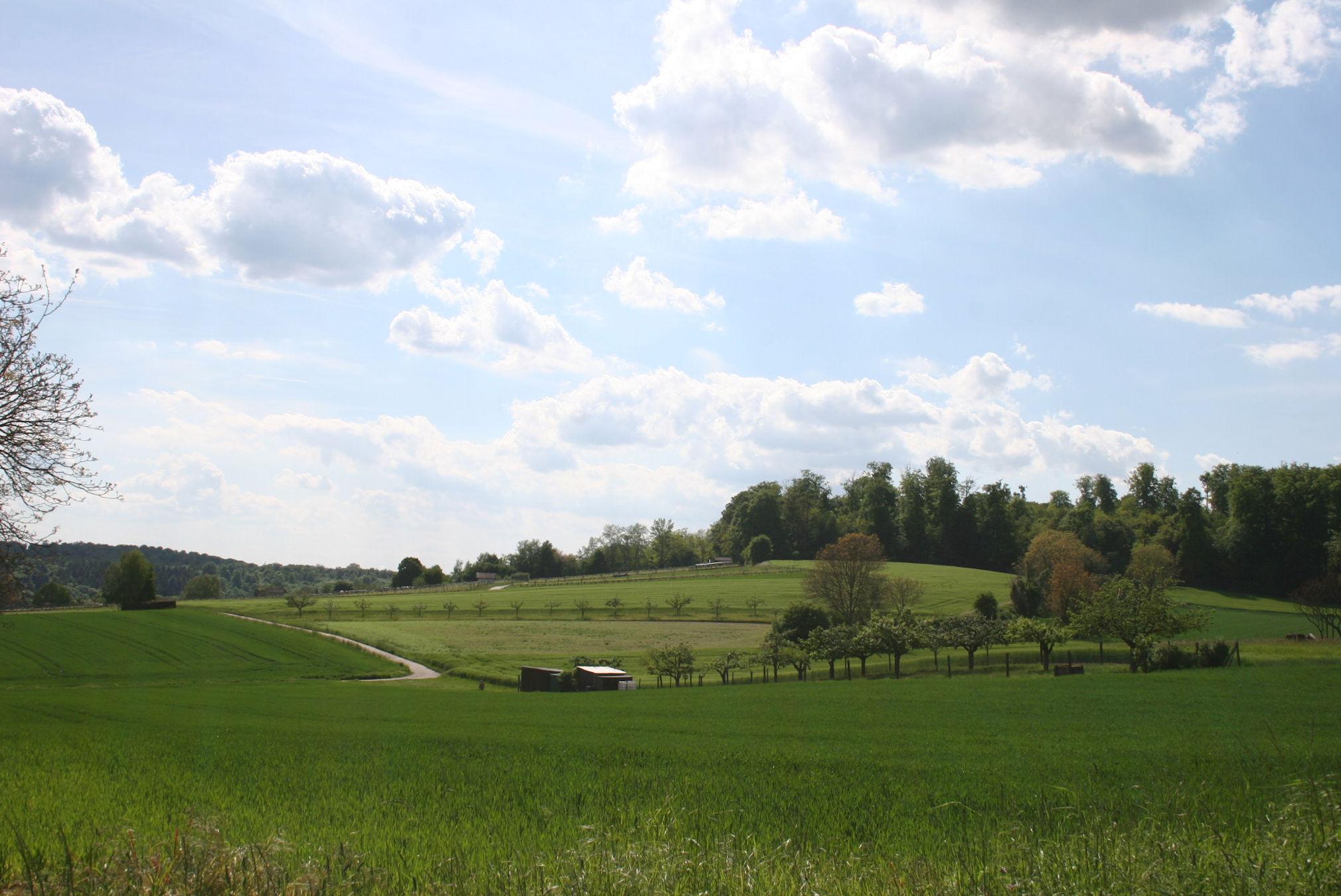 3. Landschaft – Allgemeine Infos